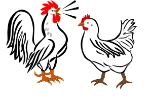 rooster-311092_640