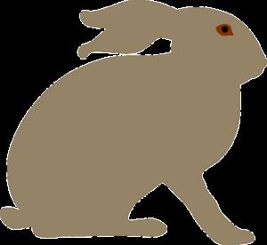 animal-160799_640